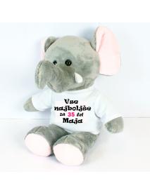 Slonček-carti