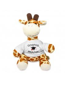 Žirafa gospod