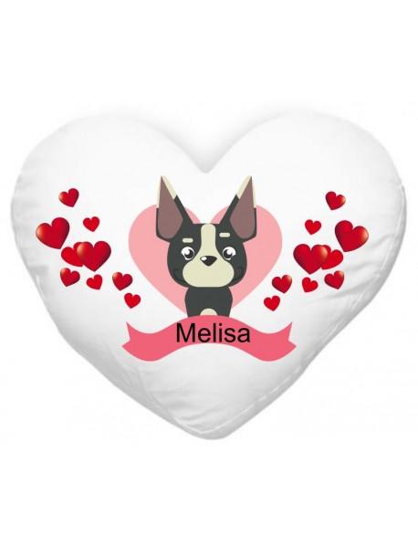 Blazinica srce kuza